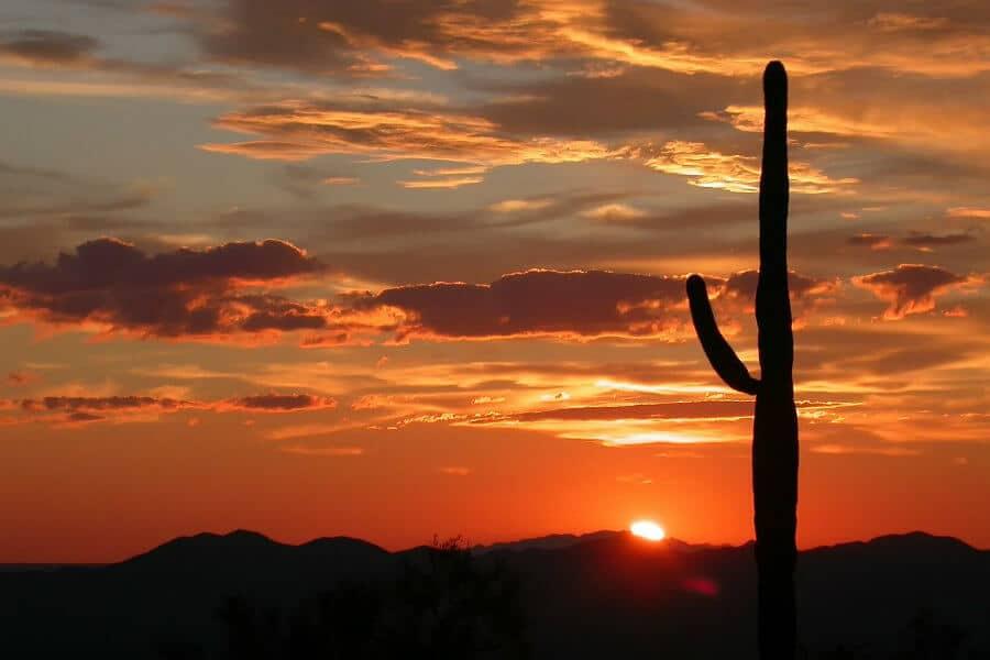 Auto insurance in Arizona